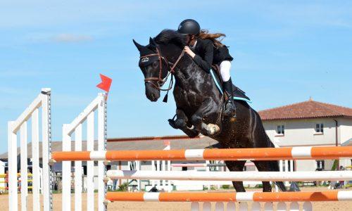 equestrian arena gallops