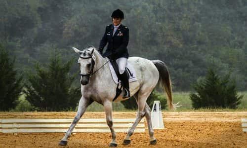Equestrian Arena